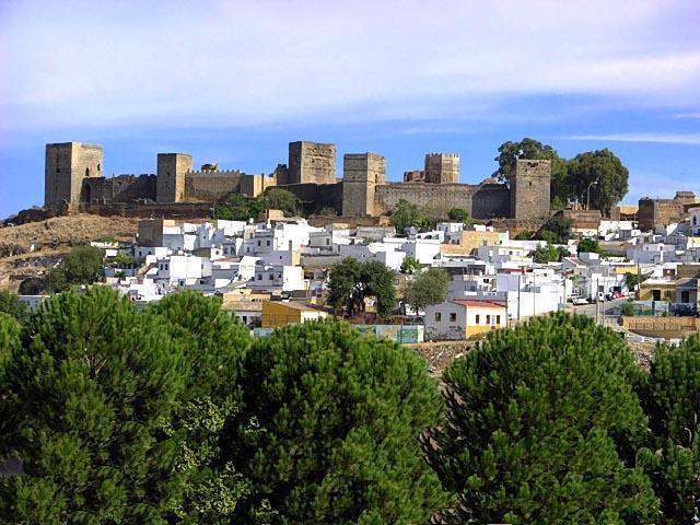 67 positivos y 6 fallecidos por coronavirus en Alcalá 1